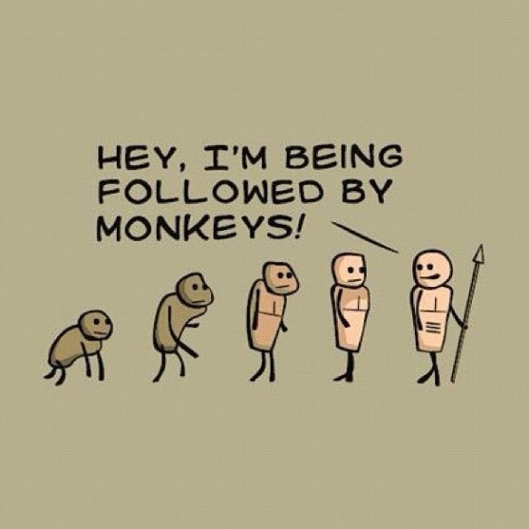 follwed by monkeys