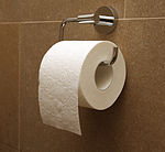 Toilet Paper Right