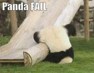 panda-fail