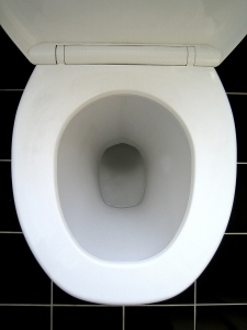 toilet bowl uk